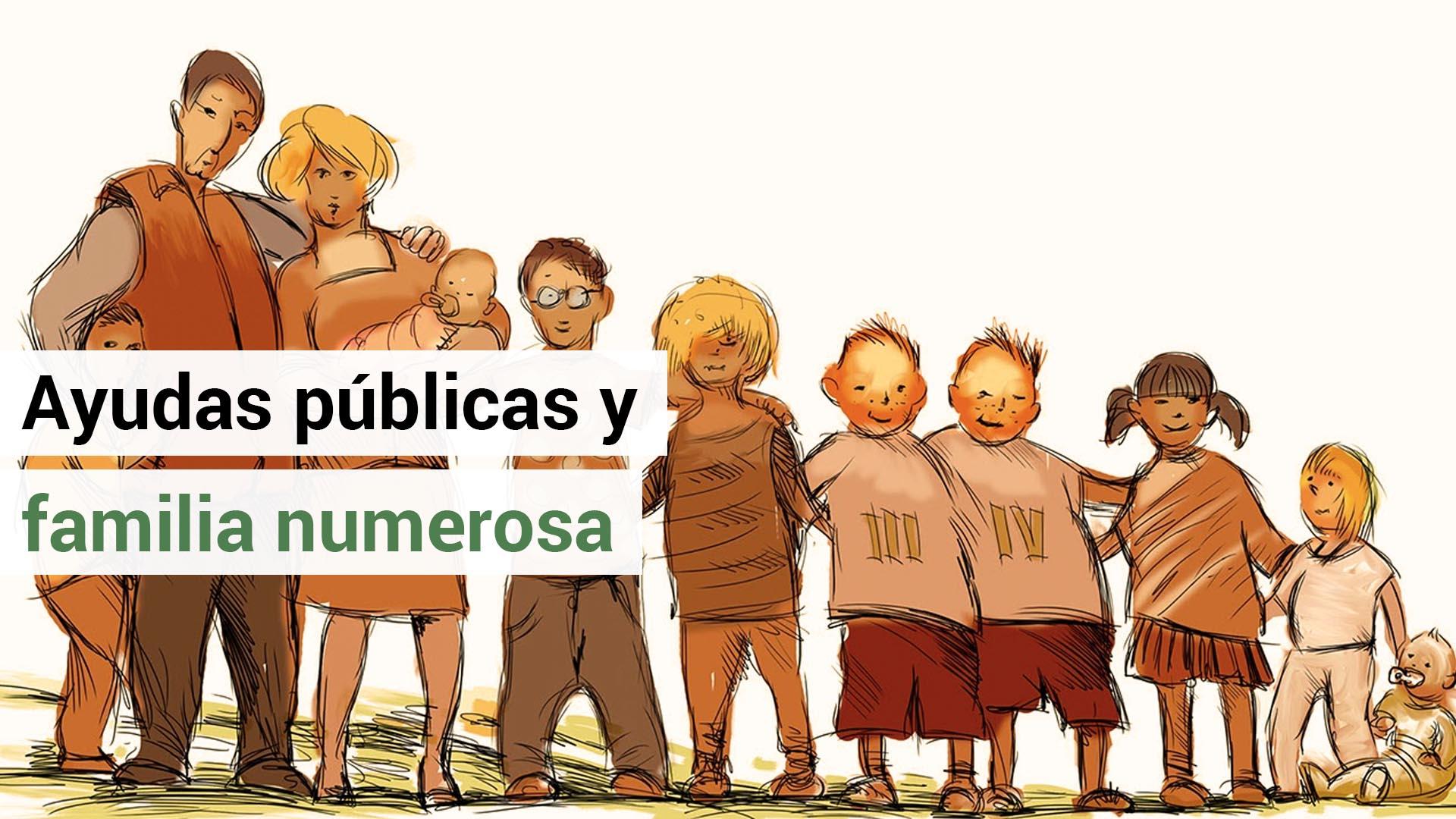 El concepto de familia numerosa a efectos de ayudas públicas