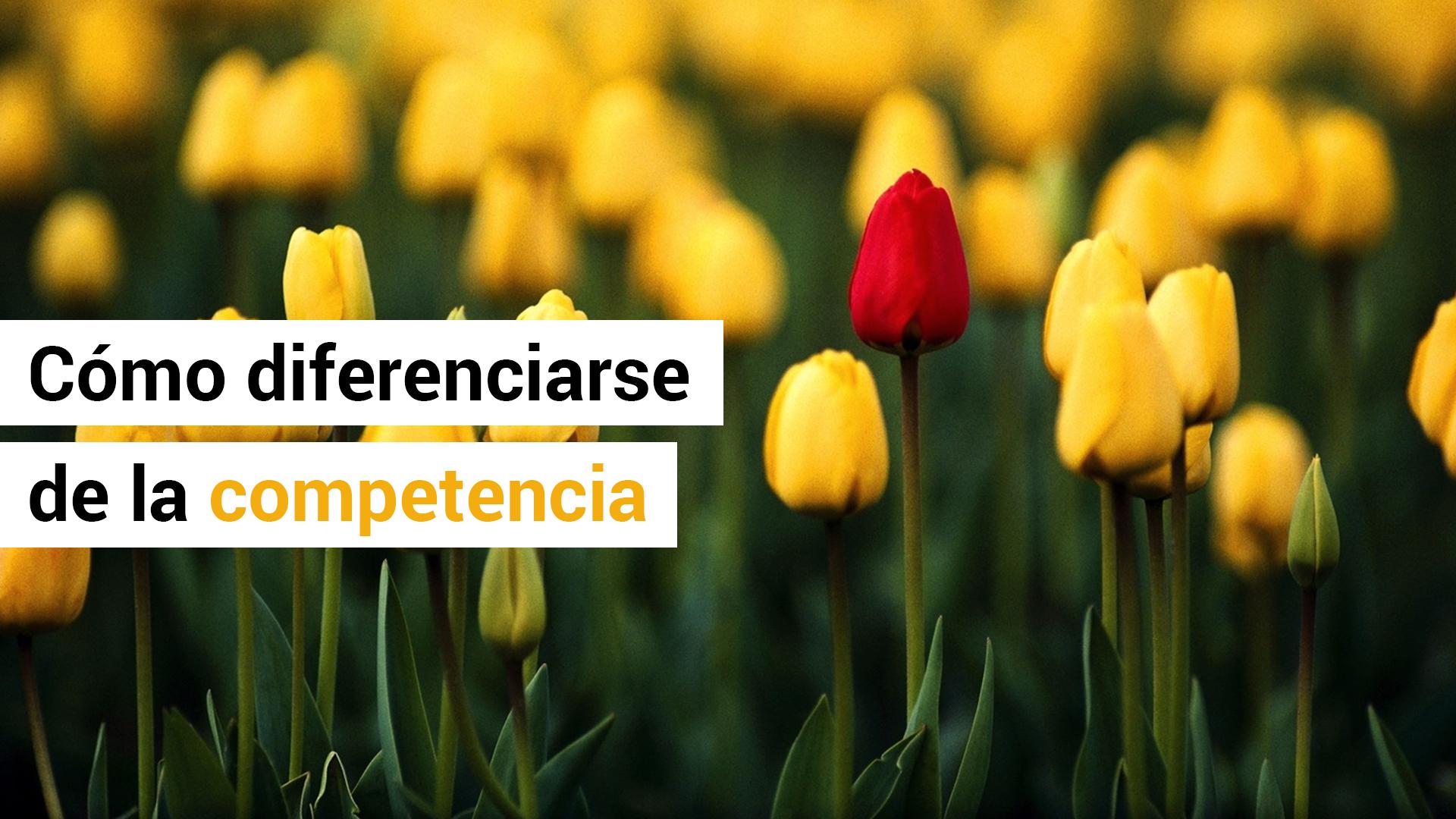 3 ideas para diferenciarse de la competencia